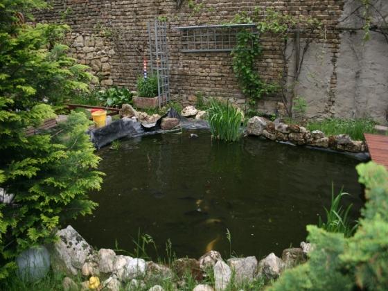 Der Teich soll optisch größer werden