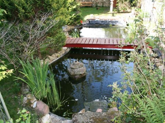 Der Teich mit Blickrichtung Norden
